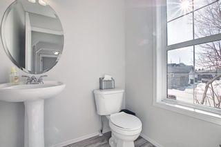 Photo 17: 253 Elgin Way SE in Calgary: McKenzie Towne Detached for sale : MLS®# A1087799