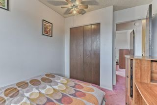 Photo 19: 167 Templevale Road NE in Calgary: Temple Semi Detached for sale : MLS®# A1140728