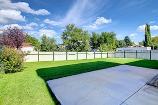Photo 40: 216 Silver Springs Green NW in Calgary: Silver Springs Detached for sale : MLS®# A1147085