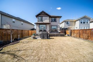 Photo 40: 115 Drake Landing Cove: Okotoks Detached for sale : MLS®# A1099965