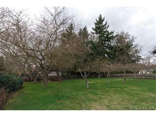 Photo 19: 3836 Epsom Dr in VICTORIA: SE Cedar Hill Full Duplex for sale (Saanich East)  : MLS®# 631569