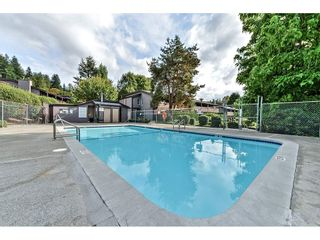 """Photo 19: 1214 34909 OLD YALE Road in Abbotsford: Abbotsford East Townhouse for sale in """"The Gardens"""" : MLS®# R2115927"""