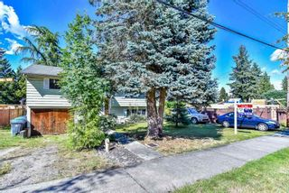 Photo 16: 14297 MELROSE Drive in Surrey: Bolivar Heights House for sale (North Surrey)  : MLS®# R2307641