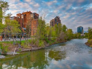 Photo 49: 1008 318 26 Avenue SW in Calgary: Mission Apartment for sale : MLS®# C4300259