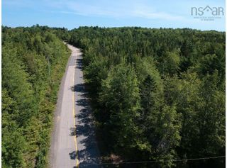 Photo 4: Lot Lake Pleasant Road in Springfield: 400-Annapolis County Vacant Land for sale (Annapolis Valley)  : MLS®# 202122591