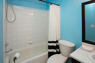 Photo 20: 305 9619 174 Street in Edmonton: Zone 20 Condo for sale : MLS®# E4247422