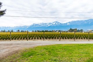 Photo 14: 48563 YALE Road in Chilliwack: East Chilliwack House for sale : MLS®# R2615661