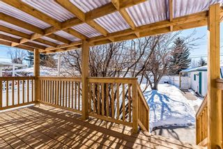 Photo 26: 447 36 Avenue NW in Calgary: Highland Park Detached for sale : MLS®# A1070695