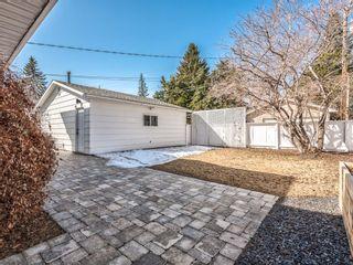 Photo 41: 10811 Maplebend Drive SE in Calgary: Maple Ridge Detached for sale : MLS®# A1115294