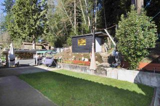 Photo 6: 438 E BRAEMAR Road in North Vancouver: Upper Lonsdale House for sale : MLS®# R2100624