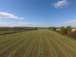 Photo 10: SW COR TWP RD 534 & RR 222: Rural Strathcona County Rural Land/Vacant Lot for sale : MLS®# E4251108