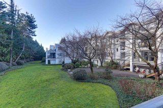 "Photo 26: 106 20976 56 Avenue in Langley: Langley City Condo for sale in ""RiverWalk"" : MLS®# R2539778"