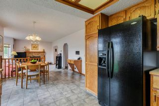 Photo 14: 16 Douglas Woods View SE in Calgary: Douglasdale/Glen Detached for sale : MLS®# A1041640