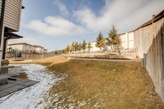 Photo 32: 220 COVEMEADOW Court NE in Calgary: Coventry Hills House for sale : MLS®# C4160697
