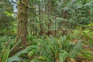 Photo 45: LOT 9 West Coast Rd in : Sk West Coast Rd Land for sale (Sooke)  : MLS®# 876669