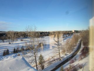 Photo 27: 35 Sturgeon Road in St. Albert: Condo for rent