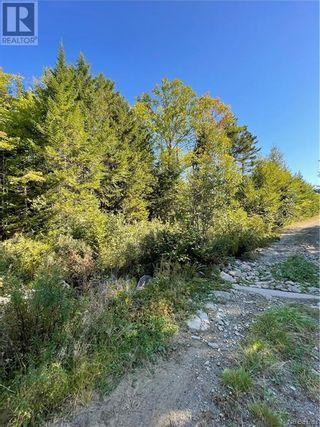 Photo 43: - Saint David Ridge in St. Stephen: Vacant Land for sale : MLS®# NB063465