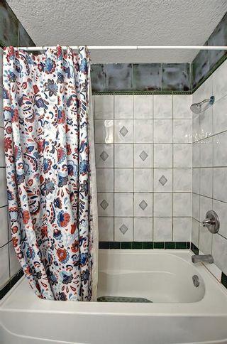 Photo 38: 6511 24 Avenue NE in Calgary: Pineridge Detached for sale : MLS®# A1152283