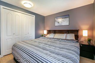 Photo 19: 8416 19 Avenue in Edmonton: Zone 29 House for sale : MLS®# E4248440