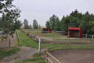 Photo 10: 255192 Range Road 282: Delacour Detached for sale : MLS®# A1073361