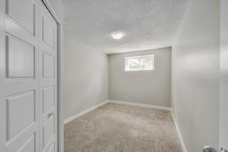 Photo 18: 17 MARTINDALE Boulevard NE in Calgary: Martindale House for sale : MLS®# C4121854