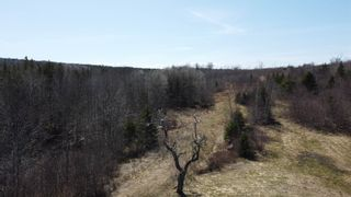 Photo 19: 8532 Trunk 4 Highway in Telford: 108-Rural Pictou County Vacant Land for sale (Northern Region)  : MLS®# 202108300