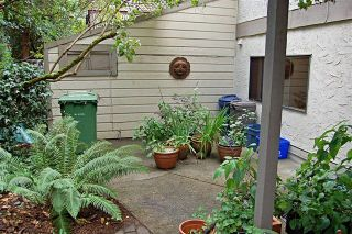 Photo 16: 4023 Travis Pl in Victoria: Residential for sale : MLS®# 283271