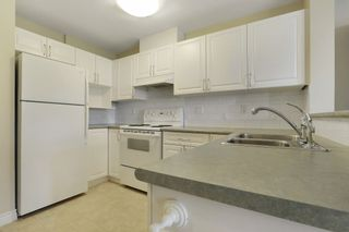 """Photo 6: 416 960 LYNN VALLEY Road in North Vancouver: Lynn Valley Condo for sale in """"Balmoral House"""" : MLS®# R2162251"""
