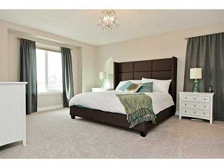 Photo 11: 141 MARQUIS Point SE in : Mahogany Residential Detached Single Family for sale (Calgary)  : MLS®# C3635651