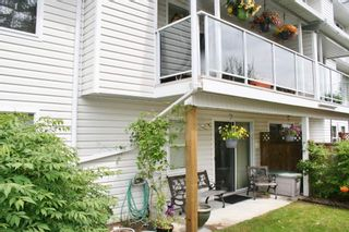 "Photo 5: 12 32861 SHIKAZE Court in Mission: Mission BC Townhouse for sale in ""Cherry Lane"" : MLS®# R2173355"