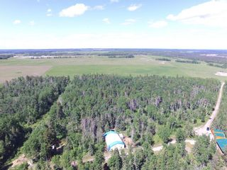 Photo 34: 342042  Range Road 44: Rural Clearwater County Detached for sale : MLS®# C4295944