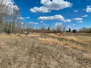 Photo 8: 48 50 Street: Abee Vacant Lot for sale : MLS®# E4243467