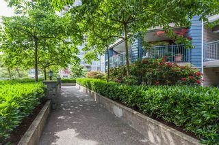 """Photo 20: 406 1190 EASTWOOD Street in Coquitlam: North Coquitlam Condo for sale in """"LAKESIDE TERRACE"""" : MLS®# R2491476"""