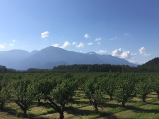 Photo 3: 47805 BALLAM Road in Chilliwack: Fairfield Island Agri-Business for sale : MLS®# C8033737
