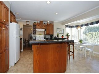 Photo 11: 1615 143B ST in Surrey: Sunnyside Park Surrey House for sale (South Surrey White Rock)  : MLS®# F1406922