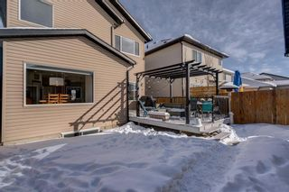 Photo 50: 119 ELGIN MEADOWS Way SE in Calgary: McKenzie Towne Detached for sale : MLS®# A1067731