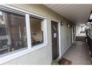 Photo 14: 209 991 Cloverdale Ave in VICTORIA: SE Quadra Condo for sale (Saanich East)  : MLS®# 756372