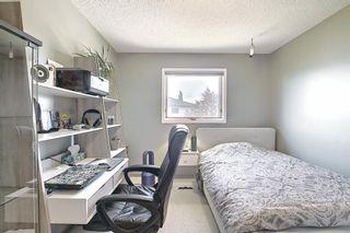 Photo 19: 175 Coral Keys Villas NE in Calgary: Coral Springs Detached for sale : MLS®# A1143860