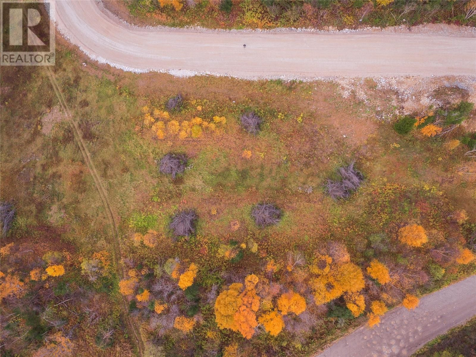 Main Photo: LOT 2 Adventure Drive Drive in Hughes Brook: Vacant Land for sale : MLS®# 1214365