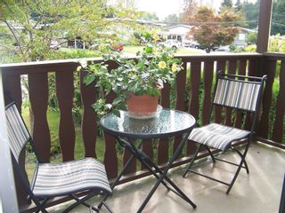 Photo 12: 2927 BABICH Street in Abbotsford: Central Abbotsford House for sale : MLS®# F2919136