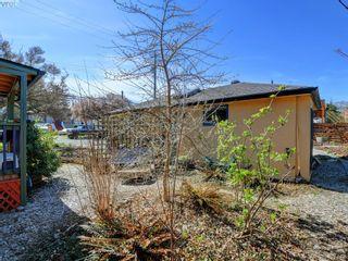 Photo 18: 1420 Haultain St in VICTORIA: Vi Oaklands House for sale (Victoria)  : MLS®# 809645