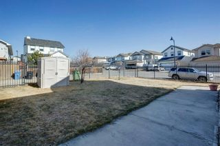 Photo 30: 81 Evansmeade Circle NW in Calgary: Evanston Detached for sale : MLS®# A1089333