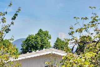 Photo 5: 450 E 18TH Avenue in Vancouver: Fraser VE House for sale (Vancouver East)  : MLS®# R2581188