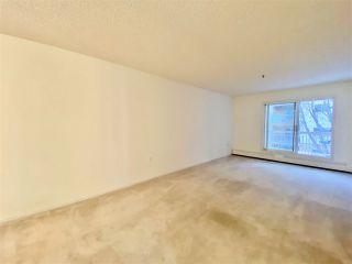 Photo 17: 203 17511 98A Avenue in Edmonton: Zone 20 Condo for sale : MLS®# E4224086