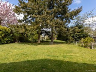 Photo 38: 3997 San Mateo Pl in VICTORIA: SE Gordon Head House for sale (Saanich East)  : MLS®# 838777