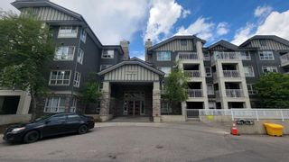 Main Photo: 434 35 Richard Court SW in Calgary: Lincoln Park Apartment for sale : MLS®# A1116981