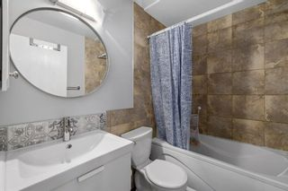 Photo 15: 32 Berkshire Close NW in Calgary: Beddington Heights Detached for sale : MLS®# A1154125