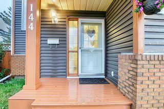 Photo 48: 144 Martinwood Court NE in Calgary: Martindale Detached for sale : MLS®# A1126396