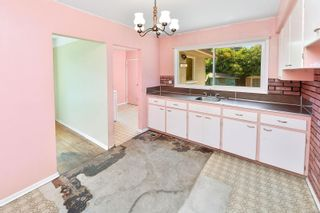 Photo 16: 2520 Forbes St in : Vi Oaklands House for sale (Victoria)  : MLS®# 880118