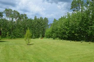 Photo 44: 472016 RGE RD 241: Rural Wetaskiwin County House for sale : MLS®# E4242573